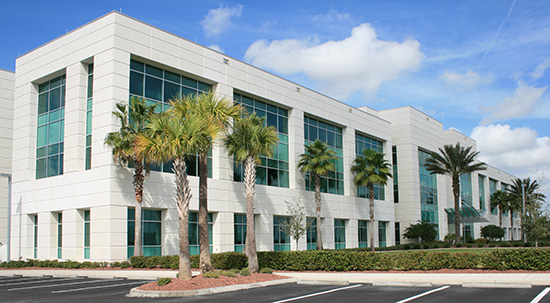 Commercial Property in Florida with Palm Trees